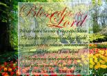 Psalm 28:6-7